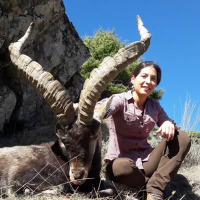 Bronze Gredos Ibex package