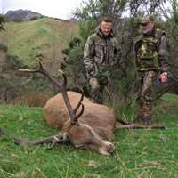 Trophy Stag and Goat Hunting '20