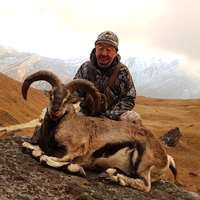 Blue Sheep & Tahr 1x1 / Fall hunt