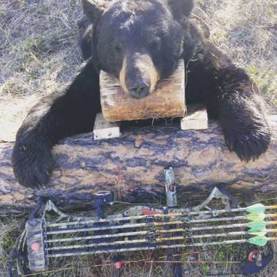Northern Alberta Trophy Black Bear Hunt