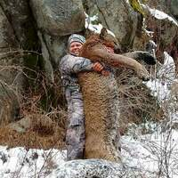 Idaho Mountain Lion/Wolf Hunt