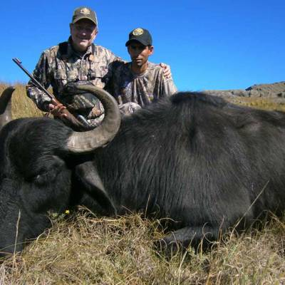 High Season Buffalo Package