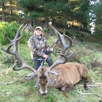 Cancellation! 350-380 Red Stag