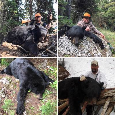 5 Day Spring Bear Hunt 2x1 - 2021