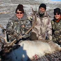 Backpack Caribou Hunt '20