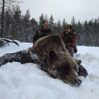 Autumn Brown Bear Hunt 2019