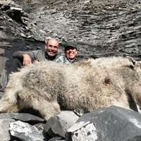 Mountain Goat Fall Hunt 2019