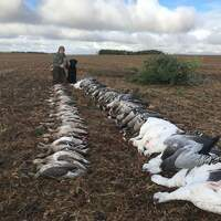 Fully Guided Waterfowl 3 Day/5 Hunts