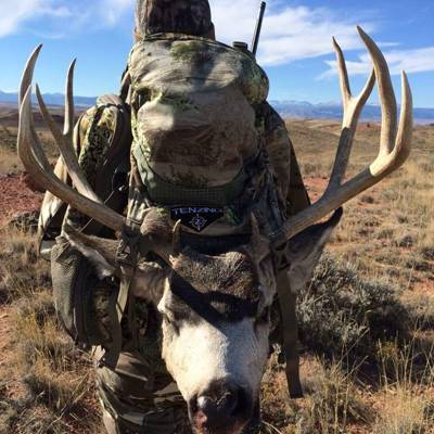 OTC Archery Rut Mule Deer Guided Only