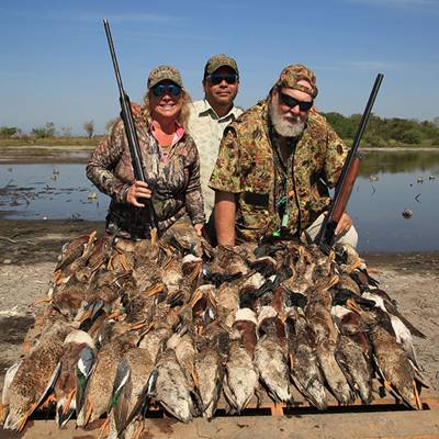 Dove, Pintail, Tree Duck 6 for 5