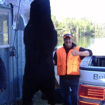 Black Bear Package