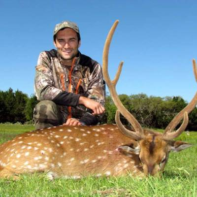 Deer & Exotics Hunt