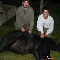 Semi-Guided Black Bear Hunt, Sept. 9-19