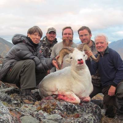 Brooks Range Dall Sheep Hunt