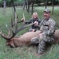 2020 Trophy Bull Elk Hunt up to 400""