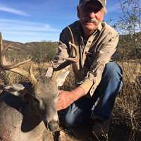 DIY Coues Deer Hunt (unguided)