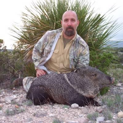 Javelina Hunting In Arizona Bookyourhunt Com