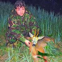 Autumn European Roe Deer Hunt