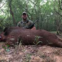 2 Day Unlimited Hogs Hunt '2021