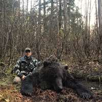 Fall Coastal Brown Bear Hunt 1x1 '19