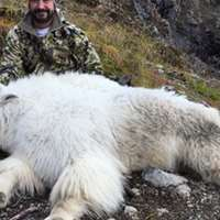 2020 BlackBear/Mountain Goat Combo Hunt