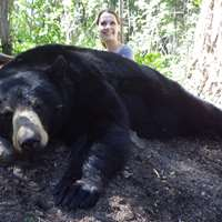 Fall Black Bear Hunt 1x1 '19