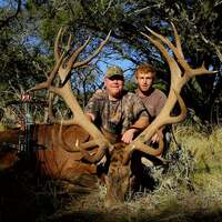 BOWHUNTING RED STAG - BOW ONLY SECTIONS