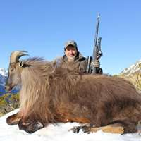 Big 3 - Red Stag, Tahr, Chamois