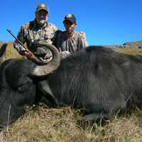 High Season Buffalo Package 2x1