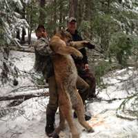 Cancellation Cougar Hunt 2x1