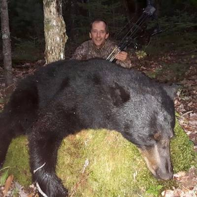 Mature Bears, High Success Rate