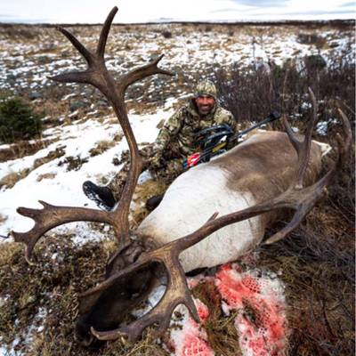 Mountain Caribou Hunt 2019