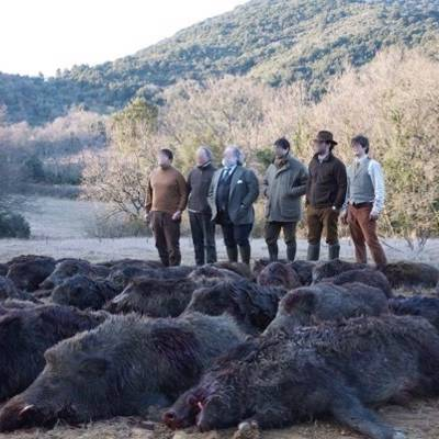 Wild Boar Driven Hunt (no lodging)