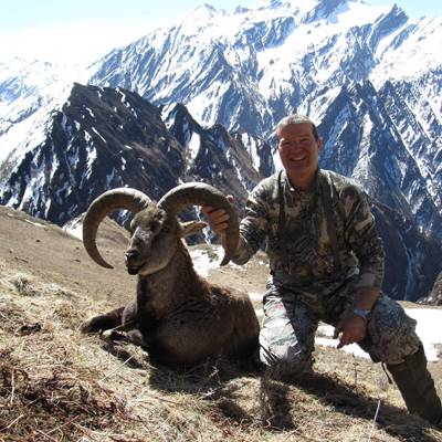 Blue Sheep & Tahr 1x1 / Spring hunt