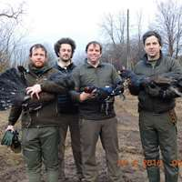 Capercaillie & Blakcock spring hunt