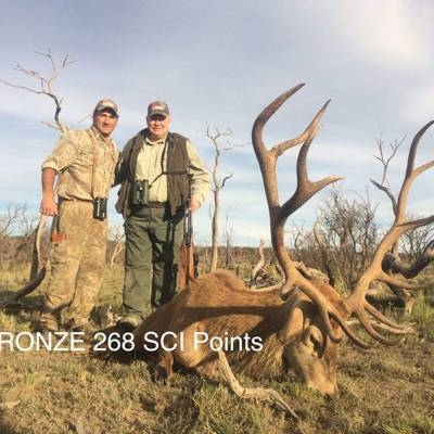 RED STAG (300-318 sci) + BLACKBUCK