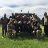 Missouri Spring Unguided Turkey Hunt