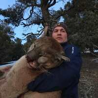Nevada 7 Day Mtn Lion Hunt Week 6
