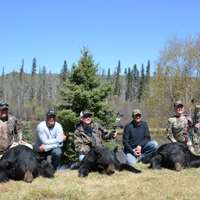 Remote Wilderness Spring Black Bear Hunt
