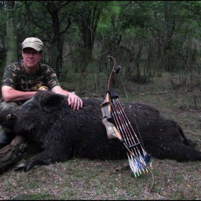 BOWHUNTING AXIS & BOAR IN BUENOS AIRES