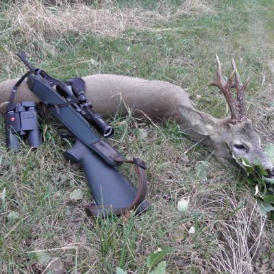 Plains Roe buck Special! From 501 g