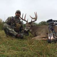 Archery Whitetail 1x1, Sept 11-18/ 2019
