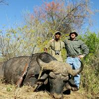 Buffalo & Plains Game Hunt