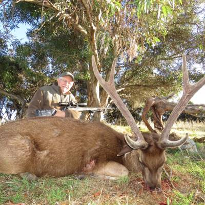 Trophy Sambar and Rusa Hunt 1x1 '2020