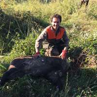 1 Wildboar hunting session for 1 gun