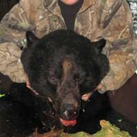 Boat Based Spring Coastal Black Bear