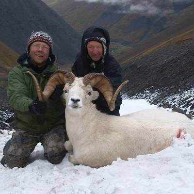 Dall's Sheep Hunt - 2020