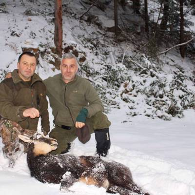 3 Days Chamois Hunt
