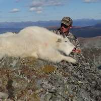 Fly In Horseback Mountain Goat Hunt 2019