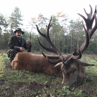 Special Gold Medal Red Stag Hunt
